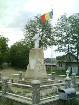 190685_535.jpg