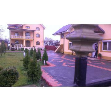 Pavele-vibropresate_8949151_1368629533.jpg