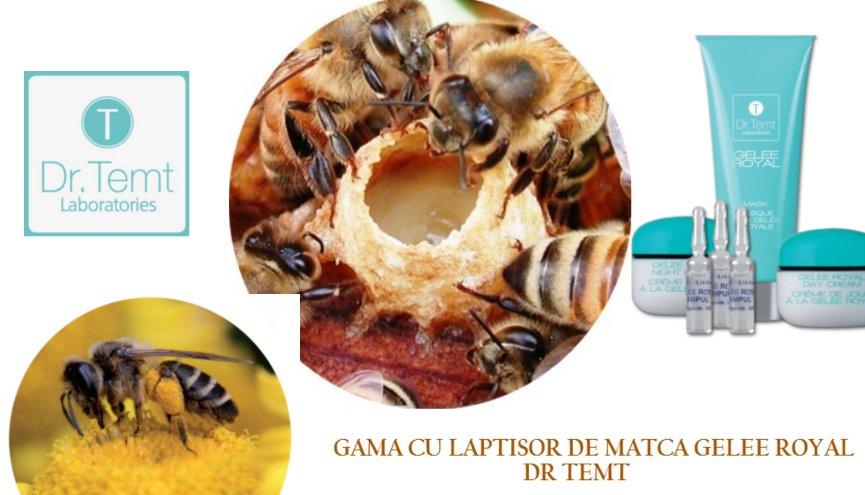 4453n_gama-cu-laptisor-de-matca-gelee-royal-dr.-temt.jpg