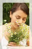 cosmetice-cu-plante-herbal-dr.-temt.jpg