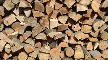 thumb_350_6gc0y_lemn-foc.jpg