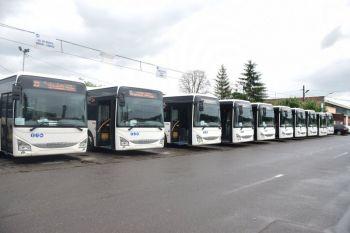 thumb_350_cfalz_autobuze.jpg
