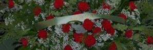thumb_350_6wu18_aranjamente-florale1.jpg