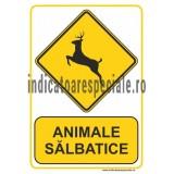 thumb_350_avoub_animale-salbatice.jpg