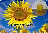 thumb_350_501386_963sk7.png